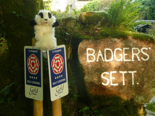 Billy's Summer Adventures at Badgers Sett