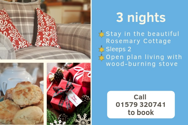 Christmas breaks at Rosemary Cottage Cornwall